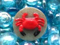 Big ring, red crab, on sand bottom in resin