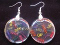 Very large earrings, multicolored springs, on transparent resin bottom